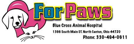 For Paws Blue Cross Animal Hospital